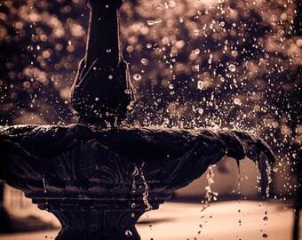 Water Fountian Photo