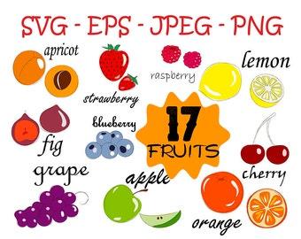 apple svg, fruit clipart, svg file, fruit svg, fruit clip art, clipart, svg file apple, transparent png, commercial clipart, doodle clip art