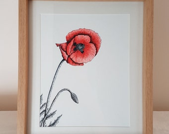 Framed Poppy Fine Art Giclee Print