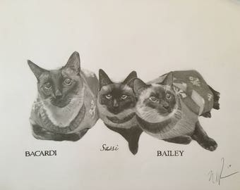 Custom portraits of pets or people