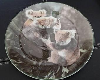Royal Doulton Koala Bears Plate,Tc1060.