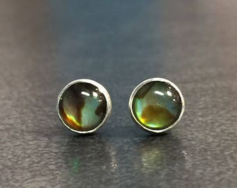 Paua Shell Earrings, Abalone Posts, Silver Bezel Set Stud Earrings