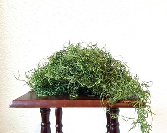 Spanish Moss .5 oz