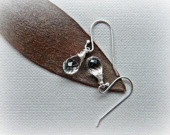 Aquamarine earrings, March birthstone, aquamarine silver earrings, petite earrings, white beryl sterling silver earrings, goshenite earrings