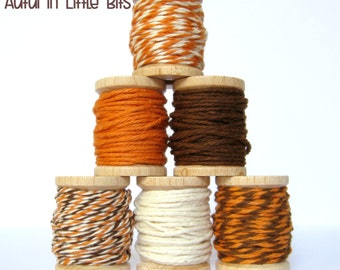 Bakers Twine | Autumn Little Bits by Trendy Twine - Fall, Thanksgiving, Packaging, Gift Wrap, Favors, Treats, Rustic - Orange, Brown, Cream