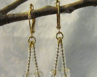 Clear Crystal Dangling Earrings