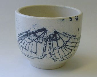 Lithographed Butterfly Wing Teacup