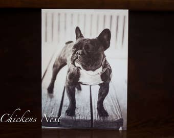 Blank Frenchie Greeting Card, Frenchie Card, French Bulldog Greeting Card, French Bulldog, French Bulldog Greeting Card