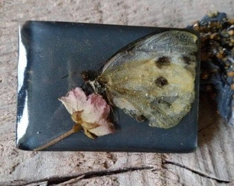 Brooch, real butterfly, real flower in resin