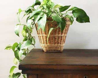 Bamboo Planter  / Indoor Planter