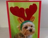 Yorkshire Terrier Christmas Card, Merry Christmas Dog Card