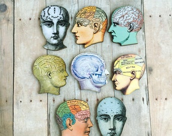 Medical Phrenology Head Brooch Oddity Jewelry Doctors Physicians