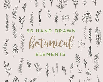 56 Hand Drawn Botanical Elements - Leaves, Plants, Nature, Twigs, Branches, Floral, Wedding, Tree, Flowers, Invitation - INSTANT DOWNLOAD!