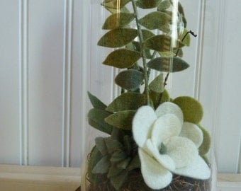 Glass Domed Felt Succulent Terrarium