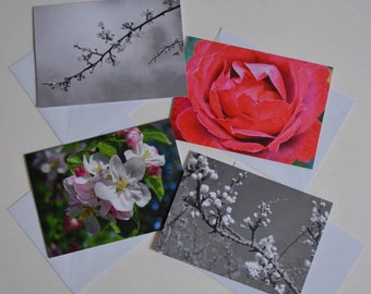Assorted pack of 4 greeting cards