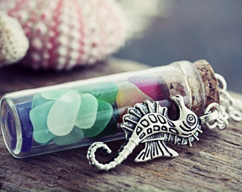 Rainbow Sea Glass Necklace Seahorse Seaglass Jewelry Ocean Glass Vial Jewellery Rare Multi Colored Pride Beach Pendant Chakra Colors Red
