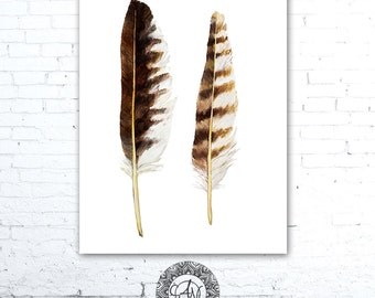 Watercolor Feather Painting, Feather Wall Art, Osprey Feathers, Bird Print, Watercolor Feather Art, Bird Artwork, Wildlife Art Print