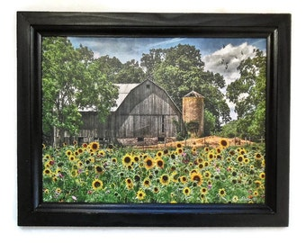 Sunflower Farm, Barn and Sunflower Picture, Country Picture, Country Decor, Wall Hanging, Handmade, 19X15, Custom Wood Frame, Made in USA
