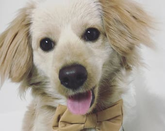 Handmade Tan Vegan Leather Bow Tie For Dogs