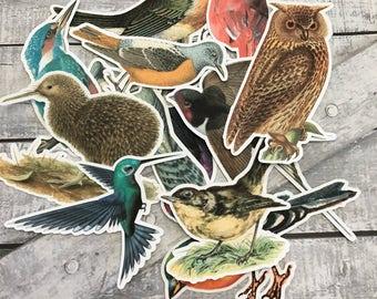 Birds Paper Embellishments,Vintage Birds Die Cuts,Art Journal Supplies,Scrapbooking,Mixed Media Supplies,Scrapbook Die Cuts,Bird Cut Outs