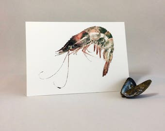 Prawn. Greetings Card of an Original Painting. Food Lover Birthday Card. Sea Life. Seafood Thank You Card Anniversary card for Fisherman