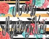 March Mystery Kit, Erin Condren Planner Stickers, Happy Planner Stickers, ECLP
