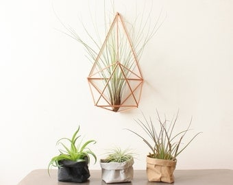 Air planters, small washable paper bags,paper plant holder, desk organizer, office, display, business card holder, tillandsia planter
