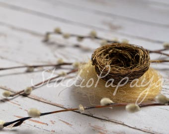Easter Digital Backdrop, Newborn nest background, Newborn Easter Photography, Simple Easter Nest
