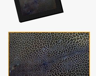 Leopard Ray Puzzle
