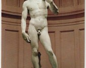 Firenze - David - Michelangelo - vintage postcard - Italy - color photo - fine arts - statue - marble - souvenirs - Free shipping Canada USA