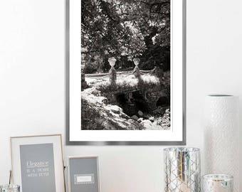 Landscape art print, Trees Black and white nature photography, large wall art nature prints, living room decor, 8x12, 16x24, 20x30, 24x36