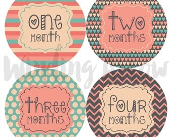 Baby Month Stickers Baby Girl Monthly Milestone Sticker Photo Prop Baby Shower Gift First Year Belly Stickers 12 Months Pink Grey Blue