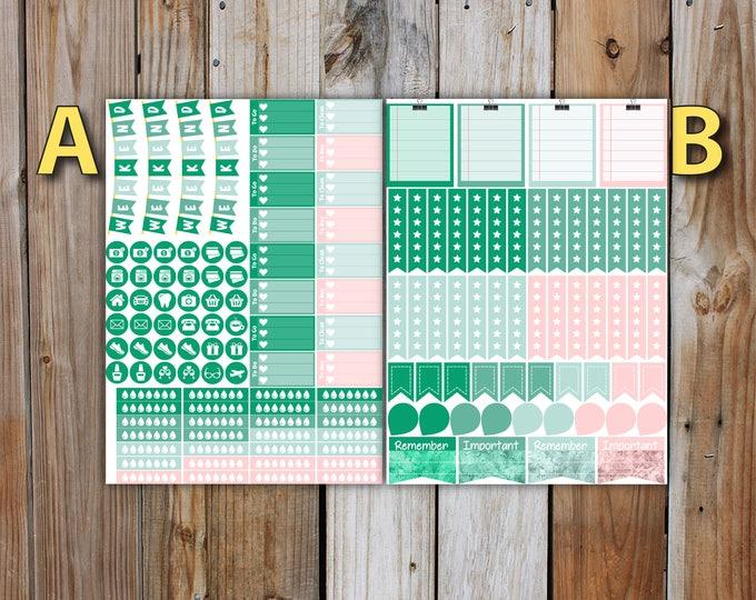 June Erin Condren DELUXE Planner Stickers Monthly Kit (4 weeks of stickers) | for use with Erin Condren LifePlanner | June 2017