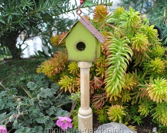 Winter Bird House Pick, One for Miniature Garden, Fairy Garden, Style: One Story, Lime