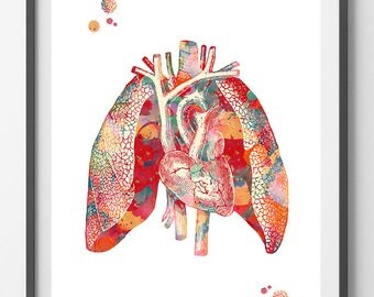 Heart and Lungs watercolor print cardiovascular and respiratory system poster anatomy art print Human Physiology medical art wall poster