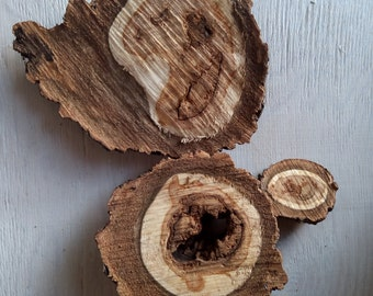 Decorative wooden pieces, set of 3, cuted branch pieces, wooden pieces for craft, rustic decoration, natural, raw, tree slices