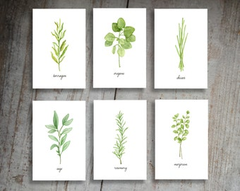 Kitchen Herbs Watercolor Illustration Art Print Set of 6 Option 1