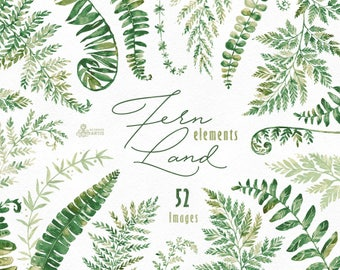 FernLand. Elements. Watercolor floral clipart, separate ferns, leaves, wild, wedding, bridal, suite, greeting, green, forest, minimalistic