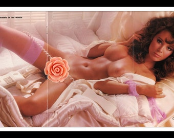 "Mature Playboy December 1983 : Playmate Centerfold Terry Nihen 3 Page Spread Photo Wall Art Decor 11"" x 23"""