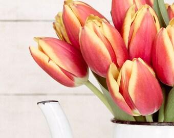 Kitchen Art, Vintage Coffee Pot Photo, Coral and Yellow Tulip Photo, Farmhouse Kitchen, Rustic Kitchen Photo, Tulip Kitchen Print