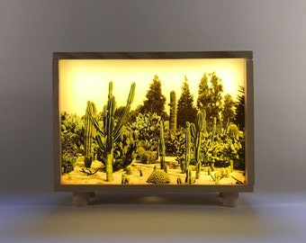 Box of light #landscape