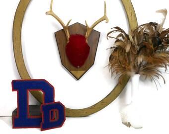 Mounted Deer Antlers, Taxidermy Deer Rack, Hunting Trophy, Mounted Antlers