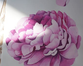 ORIGINAL watercolor PAINTING of a peony