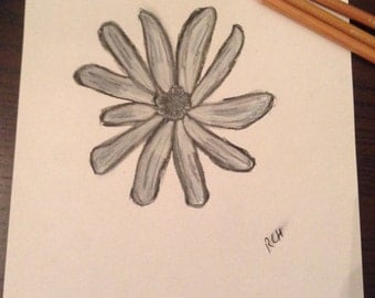 Charcoal SoftPastel Graphite Flower Sketch Drawing A4