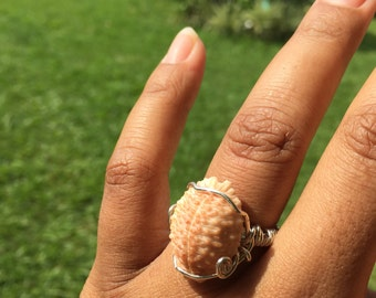 Nuclear cowrie ring