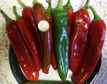 Hot Pepper- Relleno- 85 day- 1000 SHU- mildly hot- 25 seeds per pack