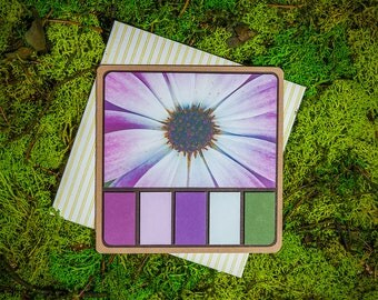 Petals Spring Palette greeting card