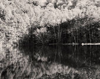 black and white, lake photography, nature art print, fine art print, trees and water, monochrome, wall art, rustic decor, reflection photo