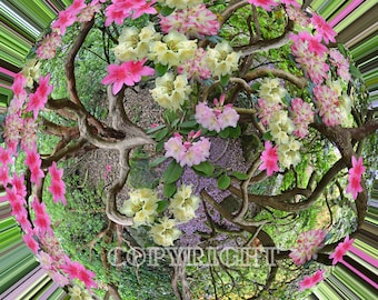 SpinArt Print - A twist of Rhododendrons