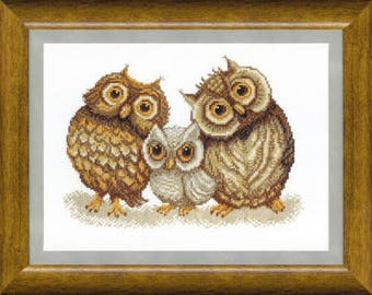 Counted Cross Stitch Kit Family of owl